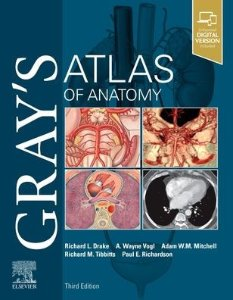 Gray's Atlas of Anatomy 3/e