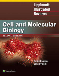 Lippincott Illustrated Reviews : Cell and Molecular Biologym2/e
