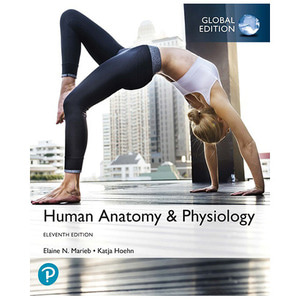 Human Anatomy & Physiology,11/e