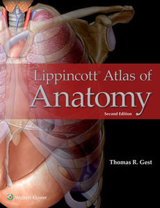 Lippincott Atlas of Anatomy 2/e(IE)