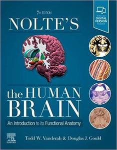 Nolte's The Human Brain,8/e An Introduction to its Functional Anatomy