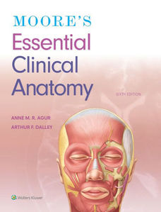 Moore's Essential Clinical Anatomy 6e (IE)
